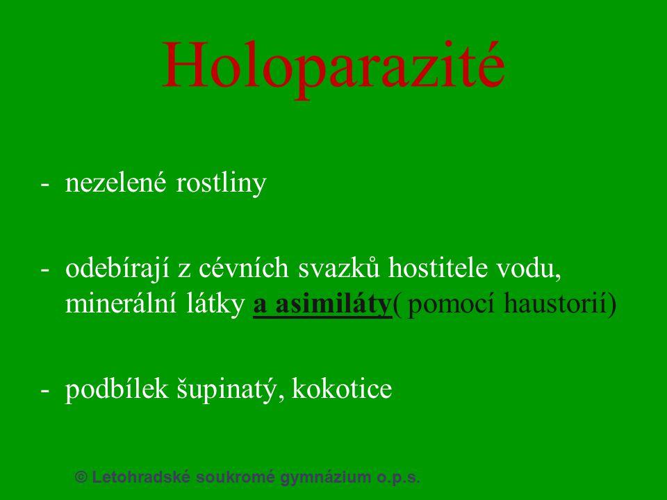 © Letohradské soukromé gymnázium o.p.s. Holoparazité -nezelené rostliny -odebírají z cévních svazků hostitele vodu, minerální látky a asimiláty( pomoc