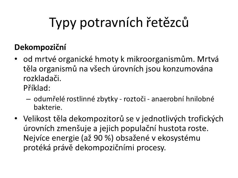Typy potravních řetězců Dekompoziční od mrtvé organické hmoty k mikroorganismům.