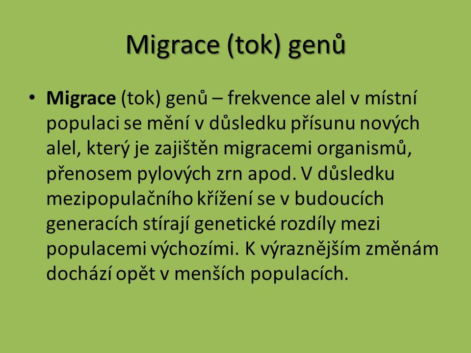 Migrace (tok) genů Migrace (tok) genů – frekvence alel v místní populaci se mění v důsledku přísunu nových alel, který je zajištěn migracemi organismů
