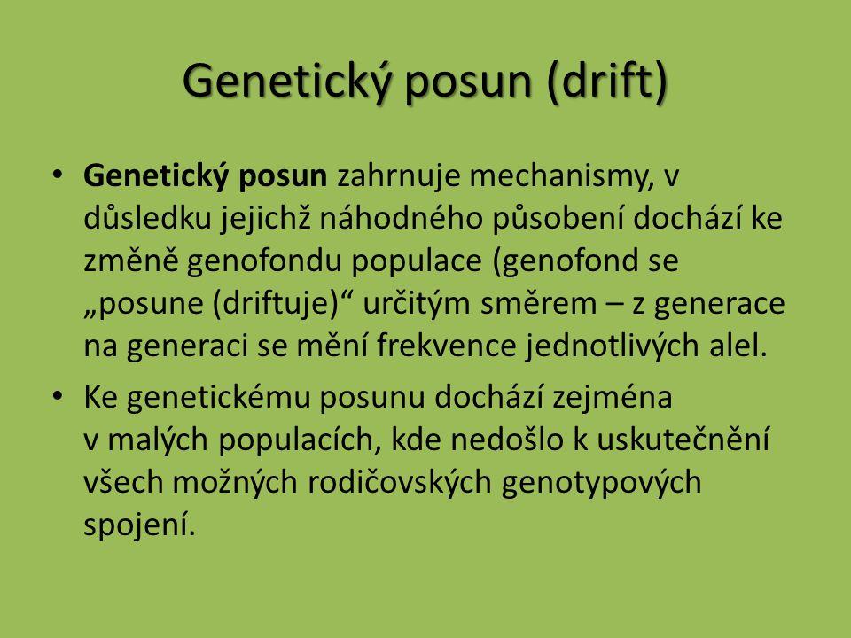 """Genetický posun (drift) Genetický posun zahrnuje mechanismy, v důsledku jejichž náhodného působení dochází ke změně genofondu populace (genofond se """"p"""