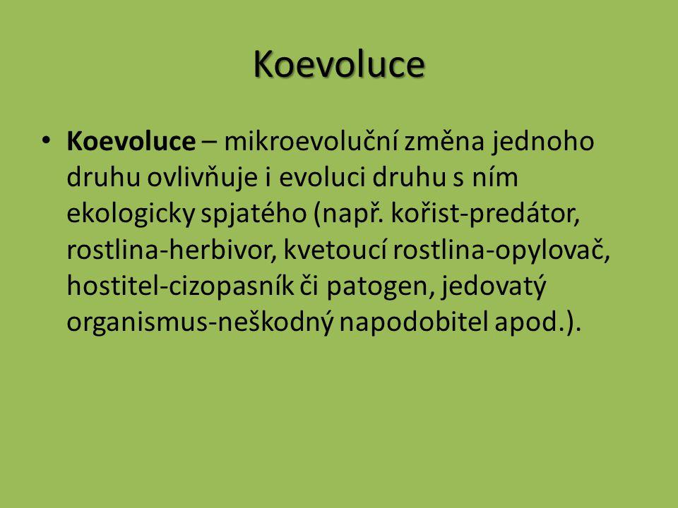 Koevoluce Koevoluce – mikroevoluční změna jednoho druhu ovlivňuje i evoluci druhu s ním ekologicky spjatého (např. kořist-predátor, rostlina-herbivor,