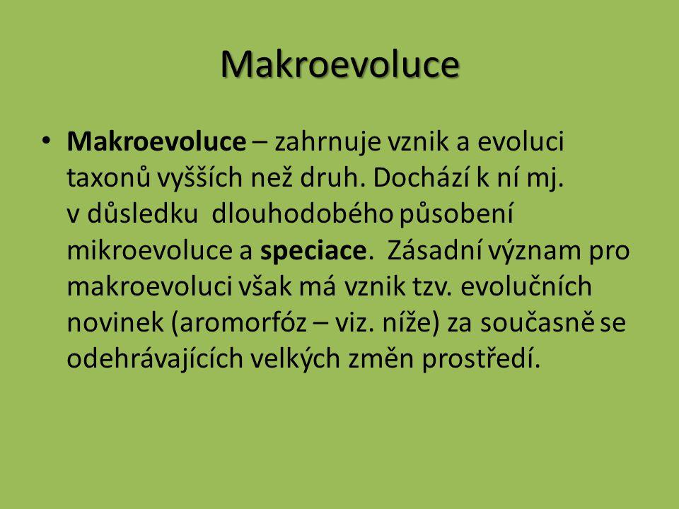 Makroevoluce Makroevoluce – zahrnuje vznik a evoluci taxonů vyšších než druh. Dochází k ní mj. v důsledku dlouhodobého působení mikroevoluce a speciac
