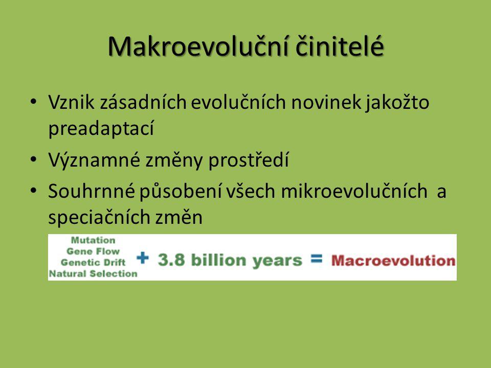 Makroevoluční činitelé Vznik zásadních evolučních novinek jakožto preadaptací Významné změny prostředí Souhrnné působení všech mikroevolučních a speci
