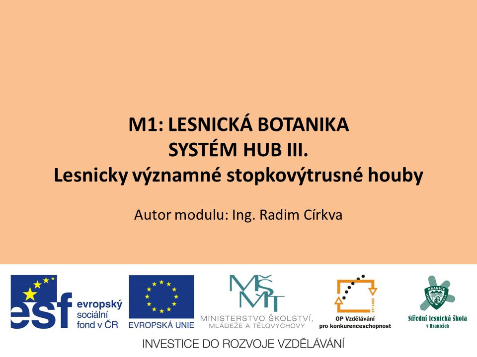 M1: LESNICKÁ BOTANIKA SYSTÉM HUB III. Lesnicky významné stopkovýtrusné houby Autor modulu: Ing. Radim Církva