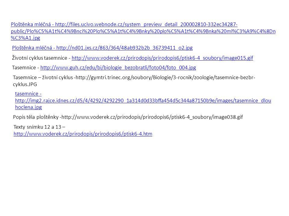 Ploštěnka mléčná - http://files.ucivo.webnode.cz/system_preview_detail_200002810-332ec34287- public/Plo%C5%A1t%C4%9Bnci%20Plo%C5%A1t%C4%9Bnky%20plo%C5