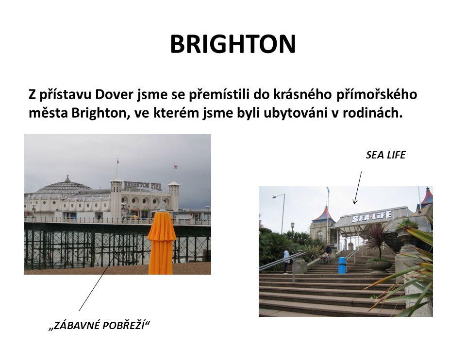 """BRIGHTON Z přístavu Dover jsme se přemístili do krásného přímořského města Brighton, ve kterém jsme byli ubytováni v rodinách. SEA LIFE """"ZÁBAVNÉ POBŘE"""