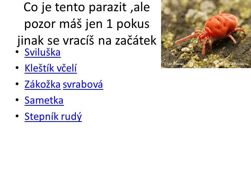 Co je tento parazit,ale pozor máš jen 1 pokus jinak se vracíš na začátek Sviluška Kleštík včelí Zákožka svrabová Zákožkasvrabová Sametka Stepník rudý