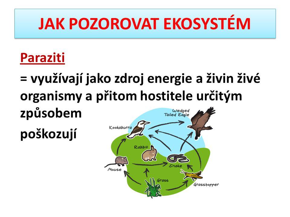 JAK POZOROVAT EKOSYSTÉM Paraziti = využívají jako zdroj energie a živin živé organismy a přitom hostitele určitým způsobem poškozují