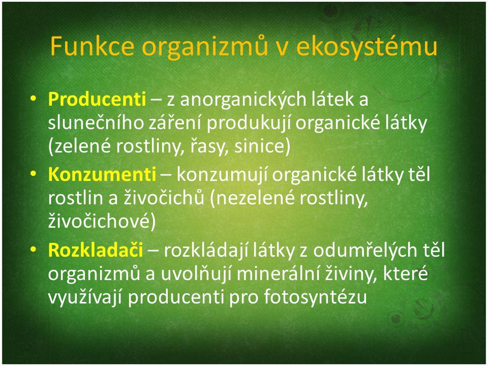 Funkce organizmů v ekosystému Producenti – z anorganických látek a slunečního záření produkují organické látky (zelené rostliny, řasy, sinice) Konzume