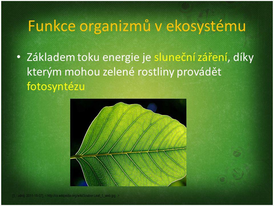 Funkce organizmů v ekosystému Základem toku energie je sluneční záření, díky kterým mohou zelené rostliny provádět fotosyntézu [1 - zdroj. 2011-15-07]