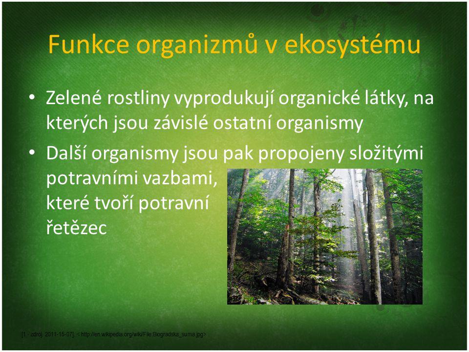Funkce organizmů v ekosystému Zelené rostliny vyprodukují organické látky, na kterých jsou závislé ostatní organismy Další organismy jsou pak propojen