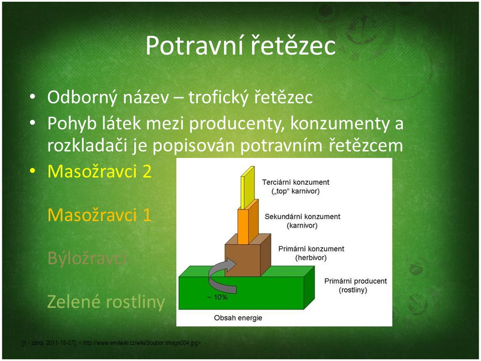 Základní potravní řetězce Pastevně kořistnický řetězec – začíná u zelených rostlin, kterými se živí býložravci, ti jsou pak potravou pro masožravců či všežravců Příklad: zelný salát -> housenka -> sýkorka -> sokol Napadá vás nějaký další příklad.