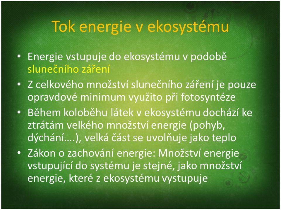 Tok energie v ekosystému Energie vstupuje do ekosystému v podobě slunečního záření Z celkového množství slunečního záření je pouze opravdové minimum v