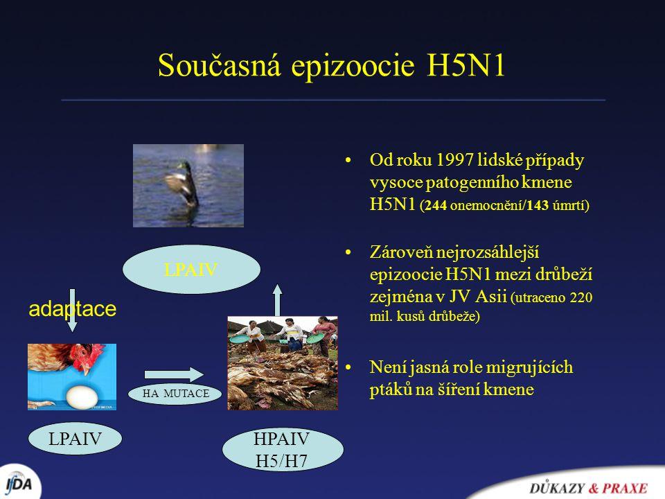 Současná epizoocie H5N1 Od roku 1997 lidské případy vysoce patogenního kmene H5N1 (244 onemocnění/143 úmrtí) Zároveň nejrozsáhlejší epizoocie H5N1 mezi drůbeží zejména v JV Asii (utraceno 220 mil.