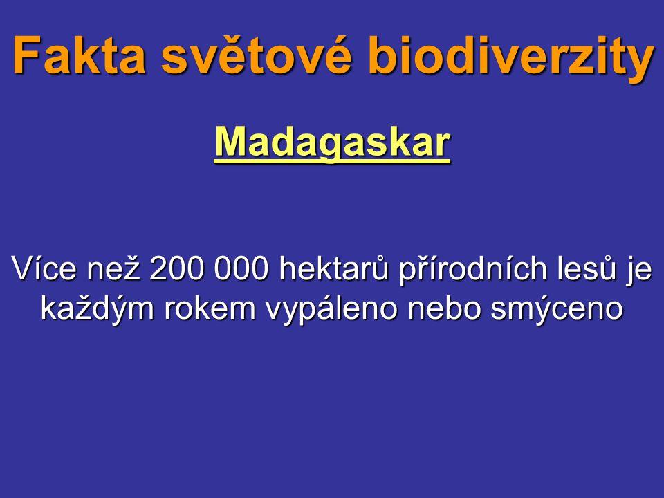 Madagaskar Více než 200 000 hektarů přírodních lesů je každým rokem vypáleno nebo smýceno Fakta světové biodiverzity