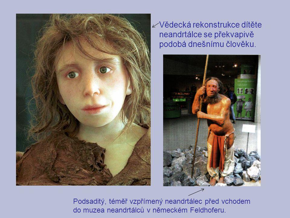 Vědecká rekonstrukce dítěte neandrtálce se překvapivě podobá dnešnímu člověku. Podsaditý, téměř vzpřímený neandrtálec před vchodem do muzea neandrtálc