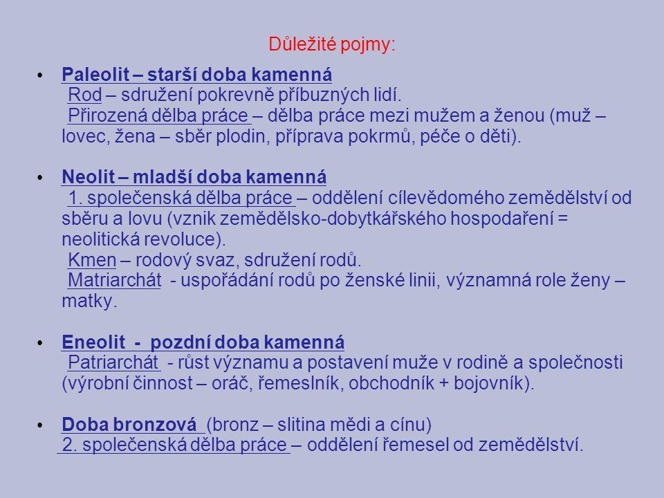 Důležité pojmy: Paleolit – starší doba kamenná Rod – sdružení pokrevně příbuzných lidí. Přirozená dělba práce – dělba práce mezi mužem a ženou (muž –