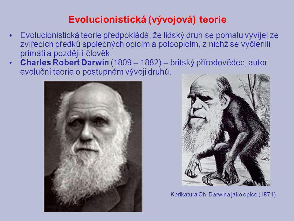 Evolucionistická (vývojová) teorie Evolucionistická teorie předpokládá, že lidský druh se pomalu vyvíjel ze zvířecích předků společných opicím a poloo
