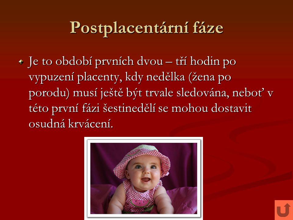 Postplacentární fáze Je to období prvních dvou – tří hodin po vypuzení placenty, kdy nedělka (žena po porodu) musí ještě být trvale sledována, neboť v