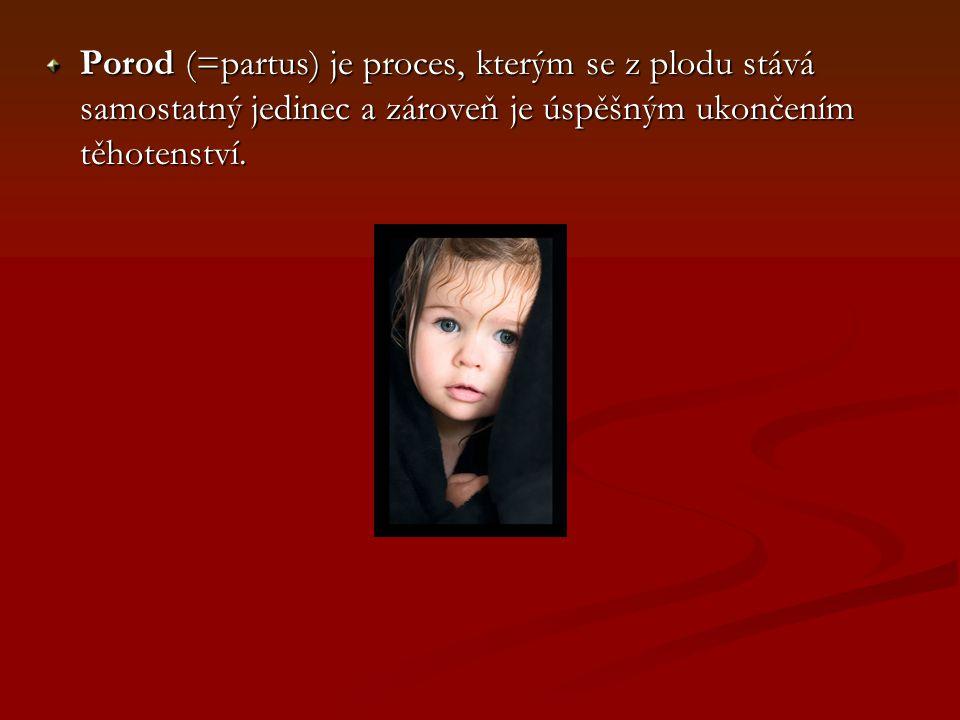 THE END Režie: Nikol Kupková Scénář: Sylva Roháčková Poděkování: Křupkovi za fotky ;o)