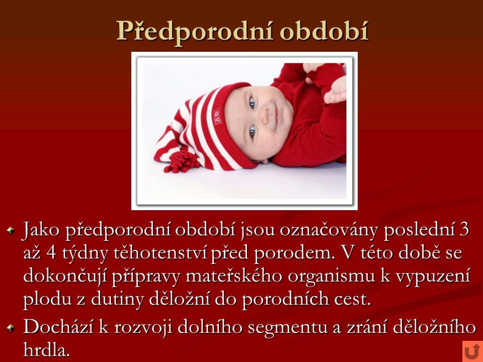 Předporodní období Jako předporodní období jsou označovány poslední 3 až 4 týdny těhotenství před porodem. V této době se dokončují přípravy mateřskéh