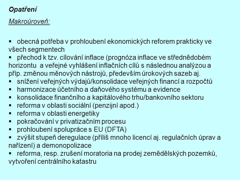 Opatření Makroúroveň:  obecná potřeba v prohloubení ekonomických reforem prakticky ve všech segmentech  přechod k tzv. cílování inflace (prognóza in
