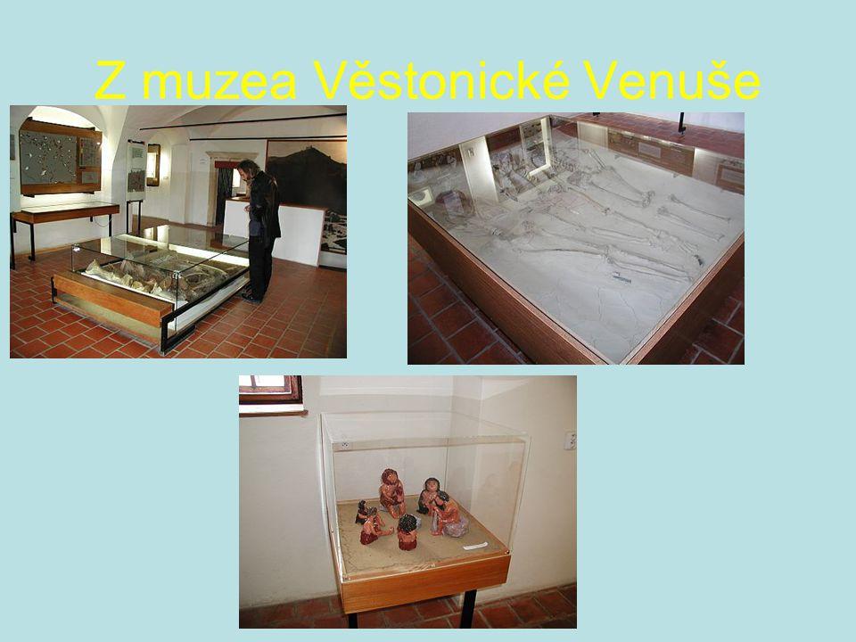 Z muzea Věstonické Venuše