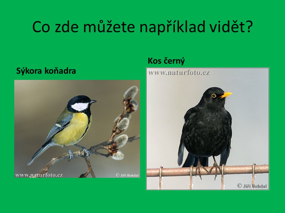 Informační tabule č.