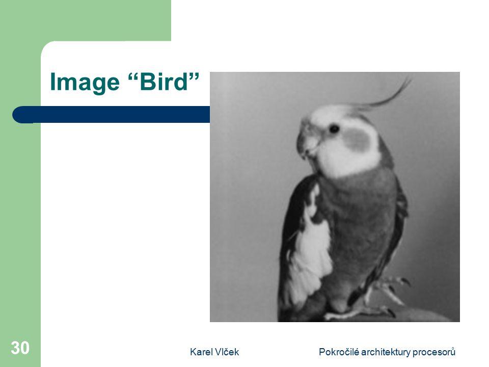 Karel VlčekPokročilé architektury procesorů 30 Image Bird