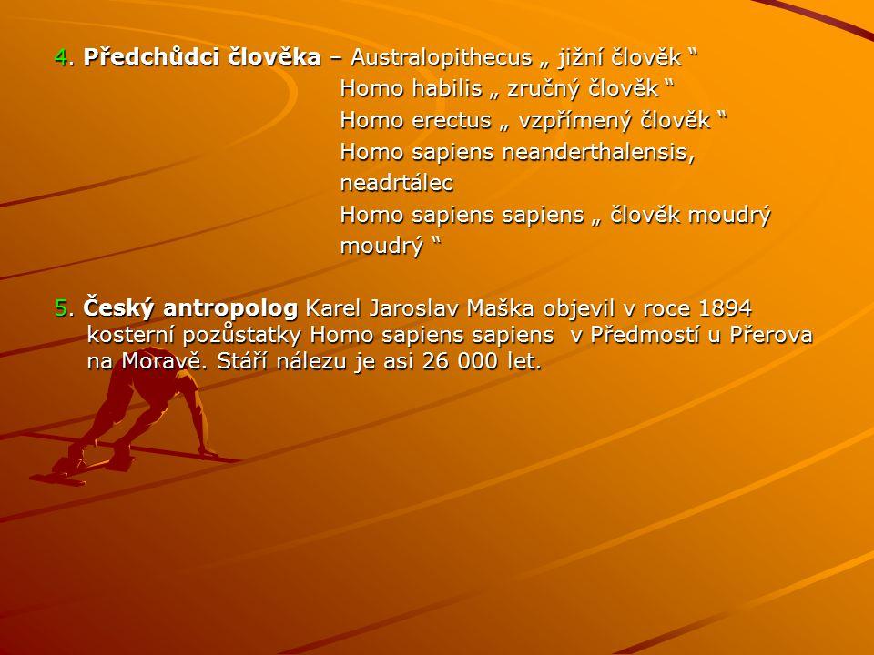 """4. Předchůdci člověka – Australopithecus """" jižní člověk """" Homo habilis """" zručný člověk """" Homo habilis """" zručný člověk """" Homo erectus """" vzpřímený člově"""