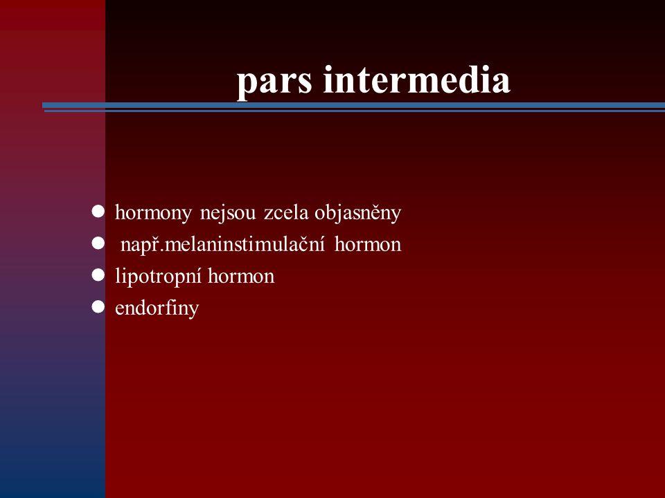 pars intermedia hormony nejsou zcela objasněny např.melaninstimulační hormon lipotropní hormon endorfiny