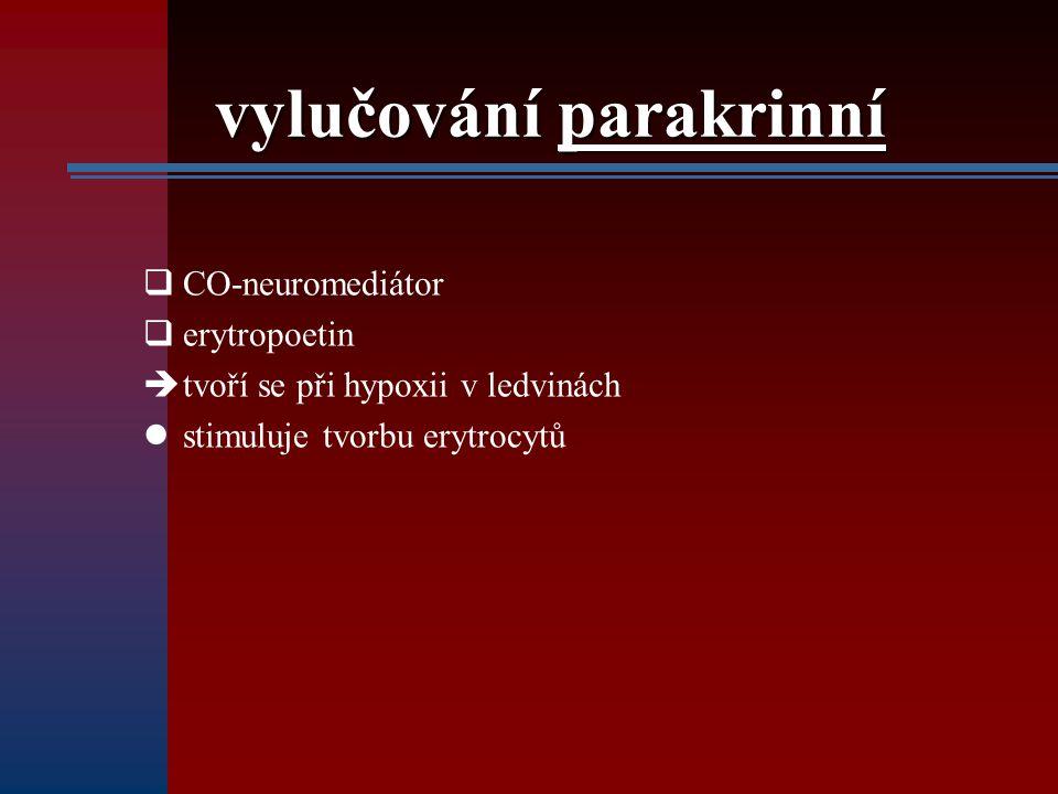 vylučování parakrinní  CO-neuromediátor  erytropoetin  tvoří se při hypoxii v ledvinách stimuluje tvorbu erytrocytů