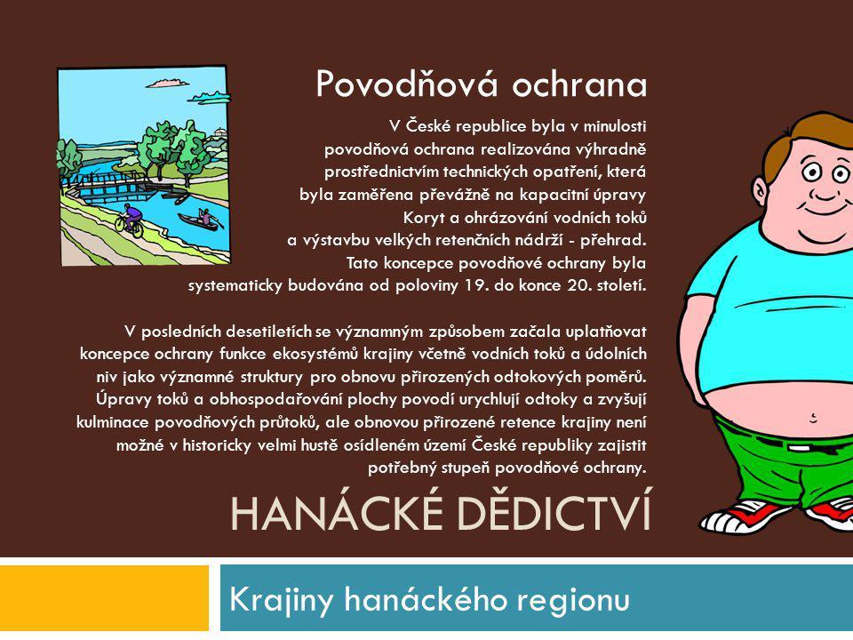HANÁCKÉ DĚDICTVÍ Krajiny hanáckého regionu V České republice byla v minulosti povodňová ochrana realizována výhradně prostřednictvím technických opatř