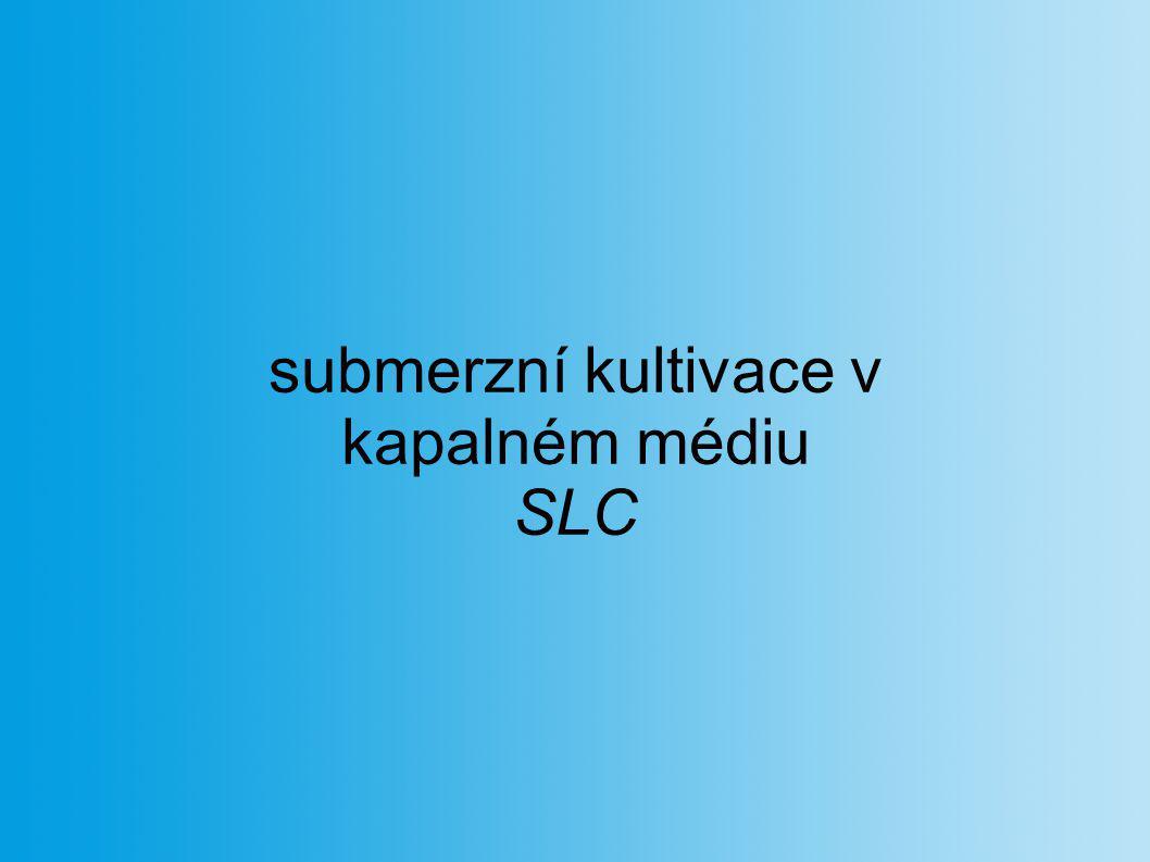 submerzní kultivace v kapalném médiu SLC
