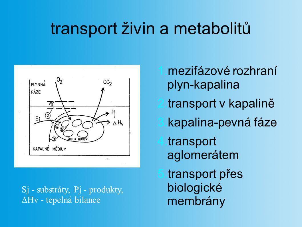 transport živin a metabolitů 1.mezifázové rozhraní plyn-kapalina 2.transport v kapalině 3.kapalina-pevná fáze 4.transport aglomerátem 5.transport přes