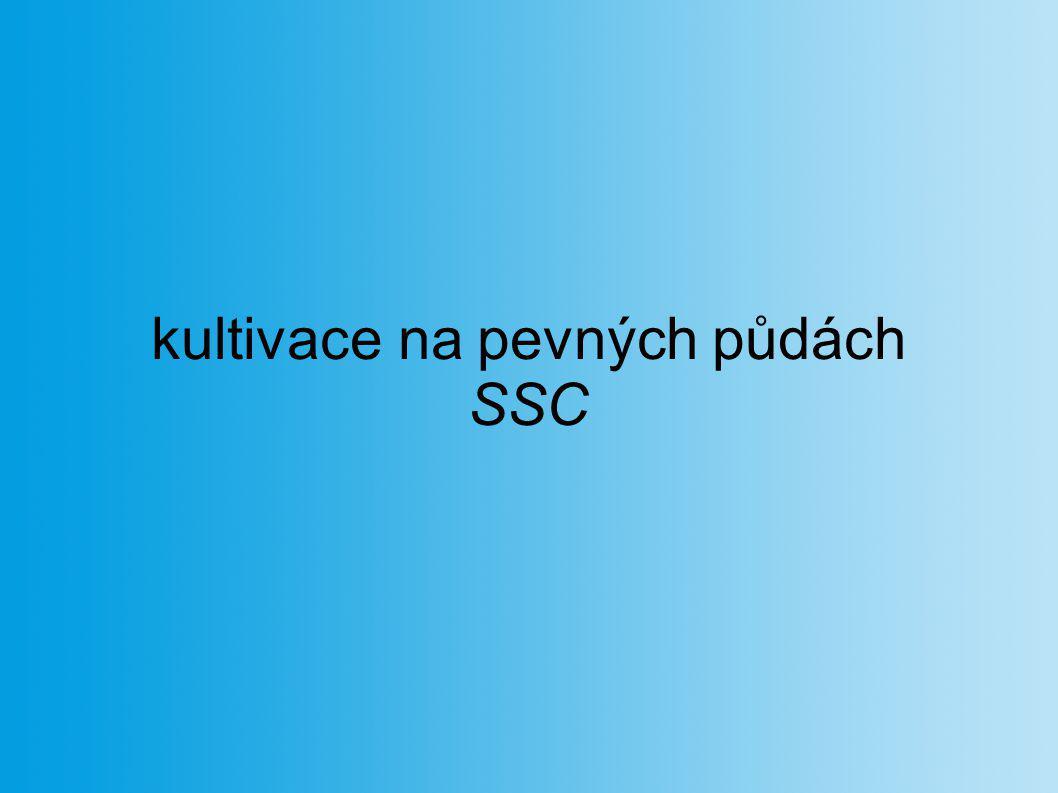 kultivace na pevných půdách SSC