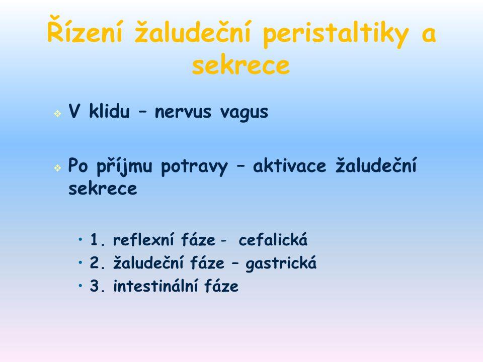 Řízení žaludeční peristaltiky a sekrece   V klidu – nervus vagus   Po příjmu potravy – aktivace žaludeční sekrece 1. reflexní fáze - cefalická 2.