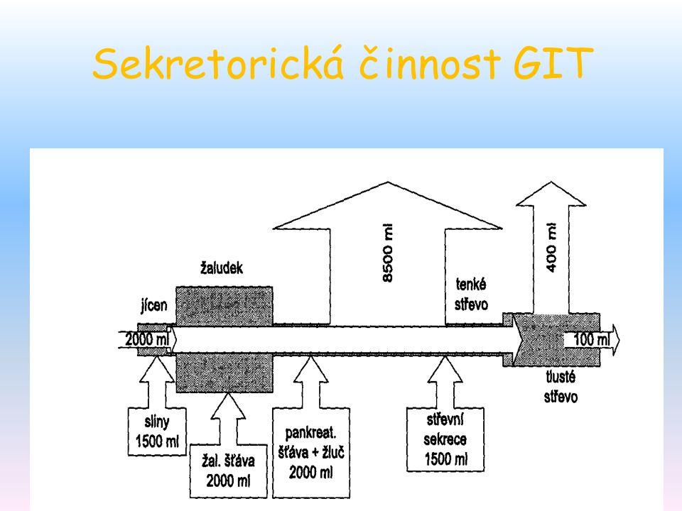 Sekretorická činnost GIT
