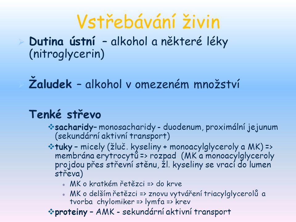 Vstřebávání živin   Dutina ústní – alkohol a některé léky (nitroglycerin)   Žaludek – alkohol v omezeném množství   Tenké střevo   sacharidy–