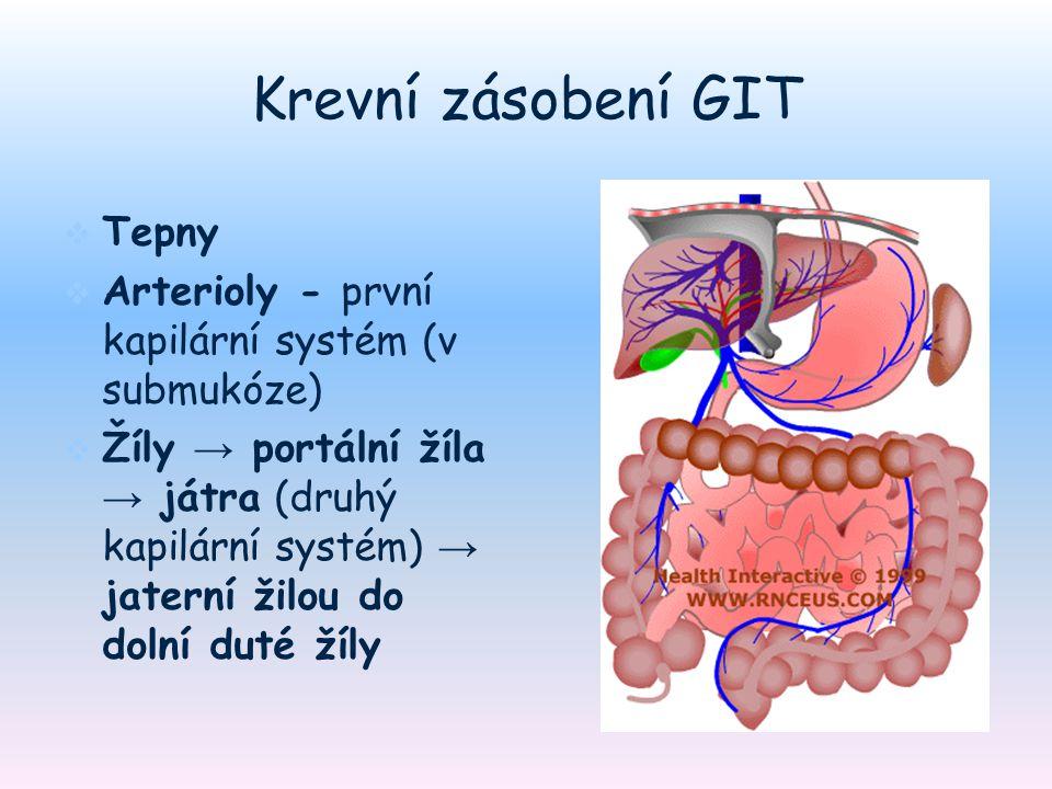 Krevní zásobení GIT   Tepny   Arterioly - první kapilární systém (v submukóze)   Žíly → portální žíla → játra (druhý kapilární systém) → jaterní