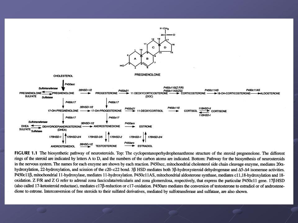 Schéma biosyntézy neuroaktivních redukovaných metabolitů progesteronu