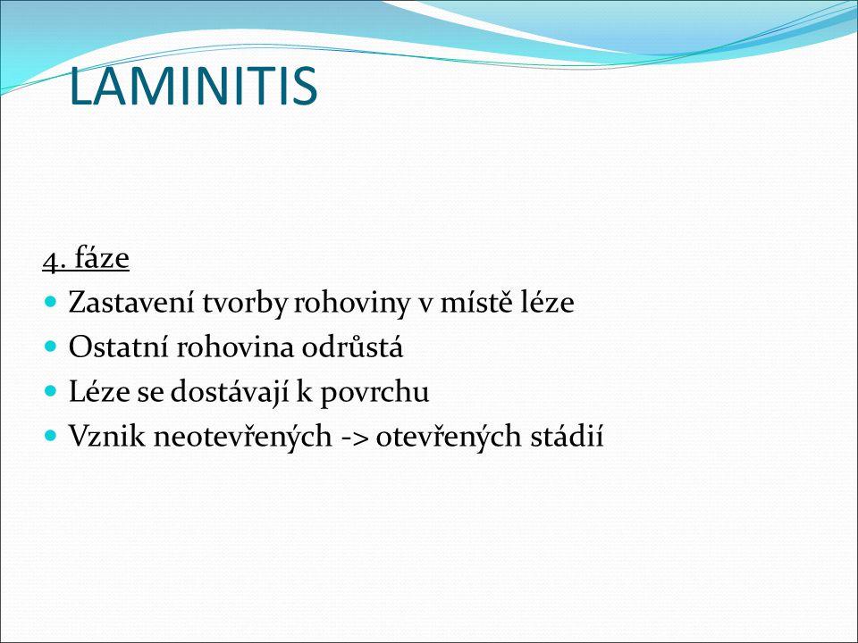 LAMINITIS 4. fáze Zastavení tvorby rohoviny v místě léze Ostatní rohovina odrůstá Léze se dostávají k povrchu Vznik neotevřených -> otevřených stádií