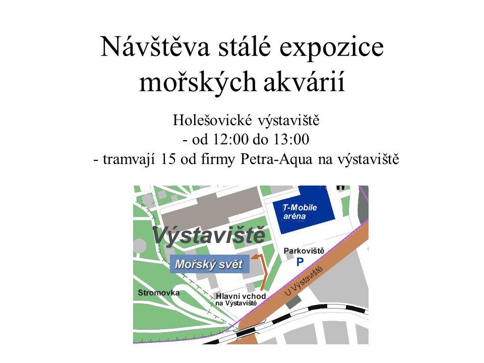 Návštěva stálé expozice mořských akvárií Holešovické výstaviště - od 12:00 do 13:00 - tramvají 15 od firmy Petra-Aqua na výstaviště