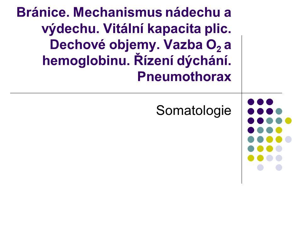 Bránice. Mechanismus nádechu a výdechu. Vitální kapacita plic. Dechové objemy. Vazba O 2 a hemoglobinu. Řízení dýchání. Pneumothorax Somatologie