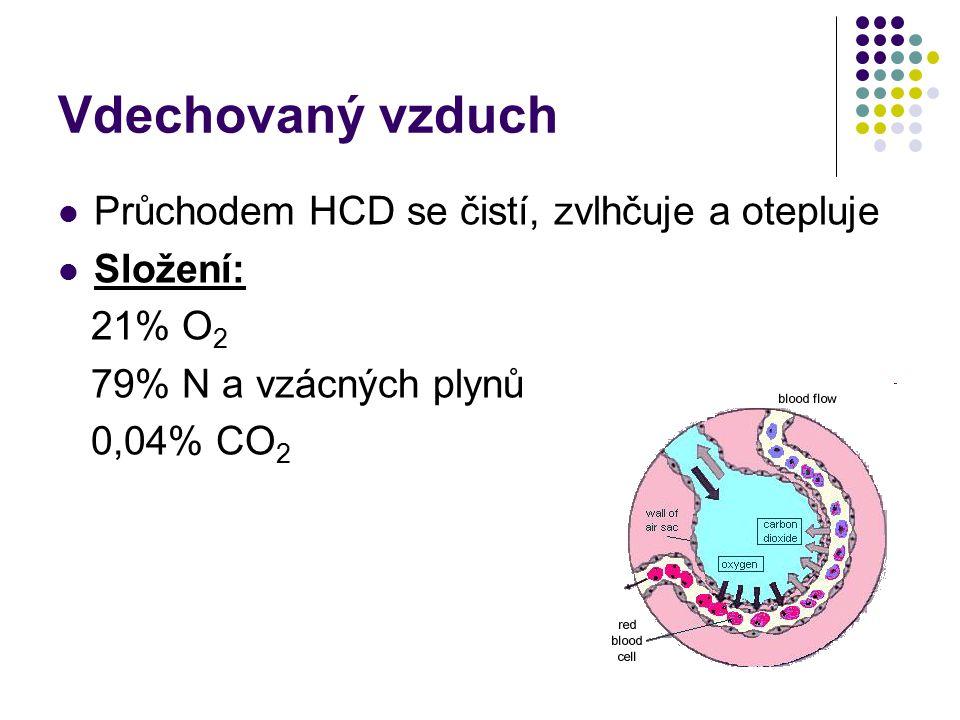 Vdechovaný vzduch Průchodem HCD se čistí, zvlhčuje a otepluje Složení: 21% O 2 79% N a vzácných plynů 0,04% CO 2