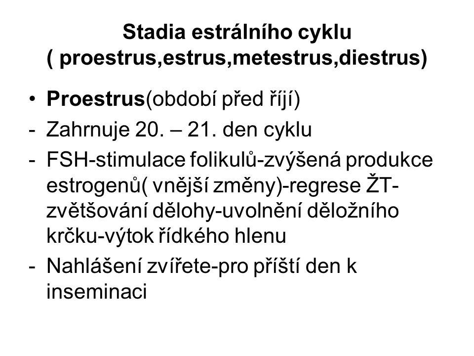 Stadia estrálního cyklu ( proestrus,estrus,metestrus,diestrus) Proestrus(období před říjí) -Zahrnuje 20. – 21. den cyklu -FSH-stimulace folikulů-zvýše