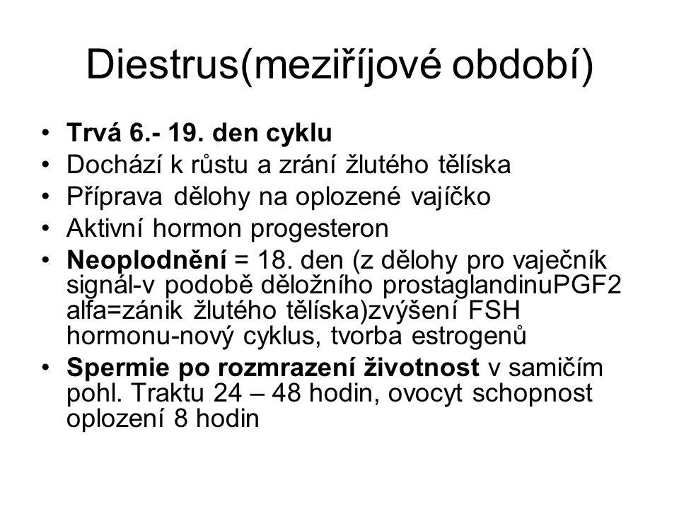 Diestrus(meziříjové období) Trvá 6.- 19. den cyklu Dochází k růstu a zrání žlutého tělíska Příprava dělohy na oplozené vajíčko Aktivní hormon progeste