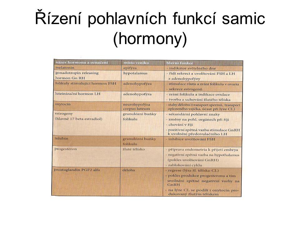 Řízení pohlavních funkcí samic (hormony)