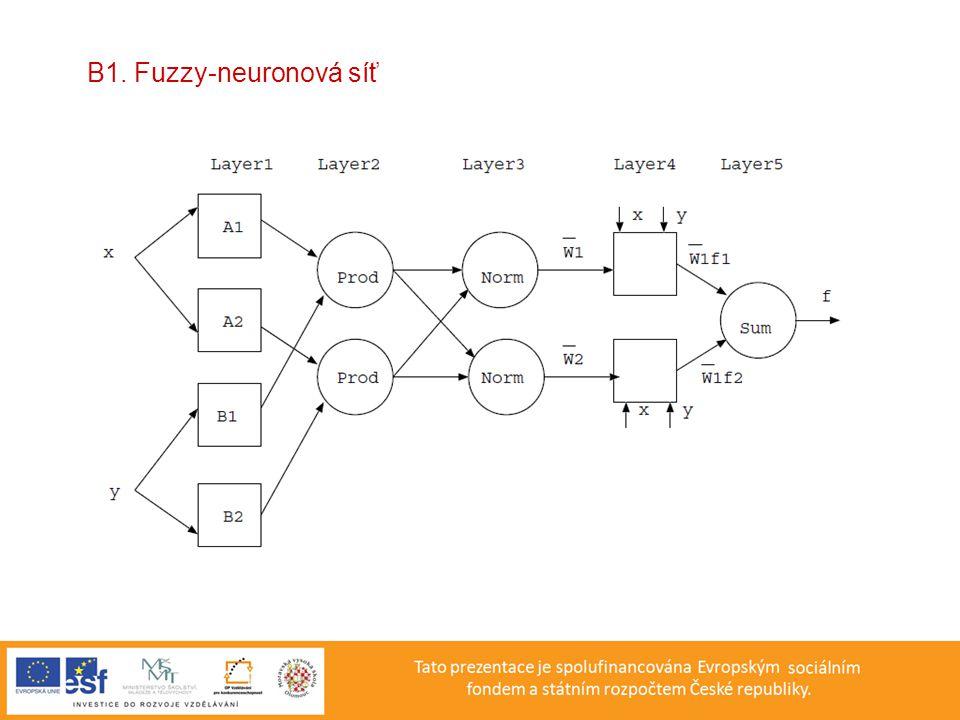 B1. Fuzzy-neuronová síť