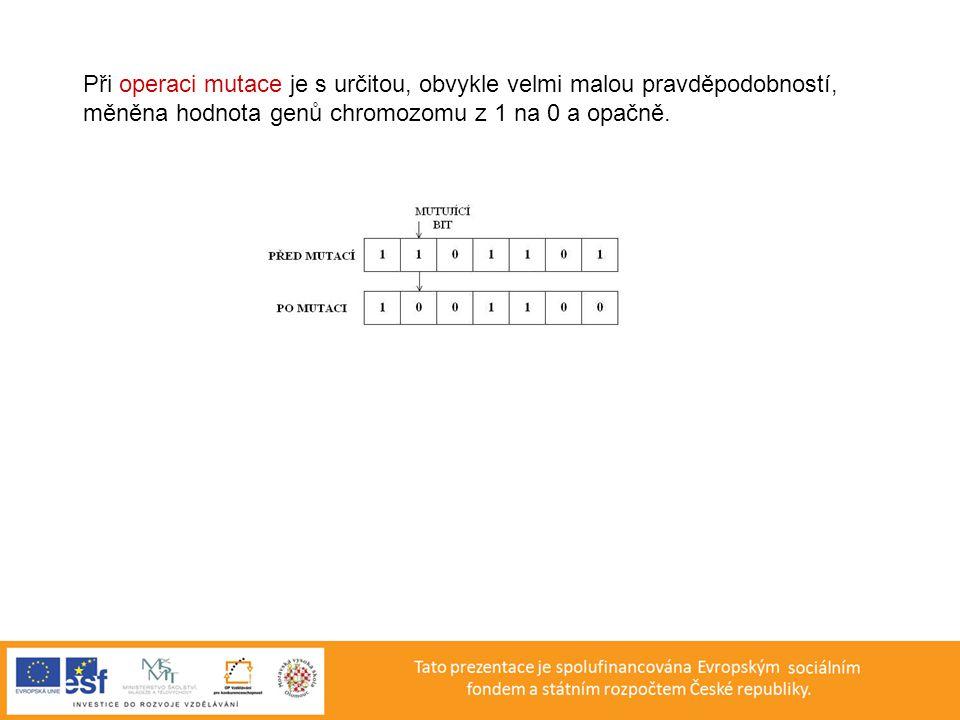 Při operaci mutace je s určitou, obvykle velmi malou pravděpodobností, měněna hodnota genů chromozomu z 1 na 0 a opačně.
